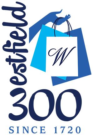 300ShoppingLogo-Color