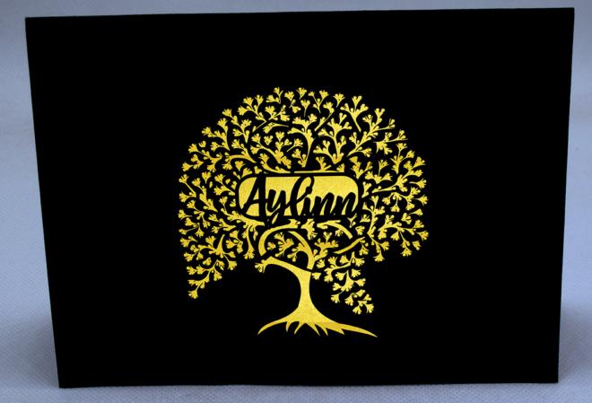 Aylinn-cover