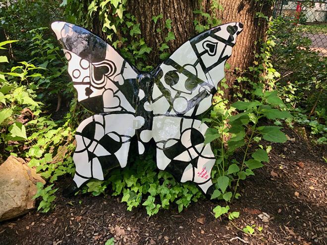butterfly-back